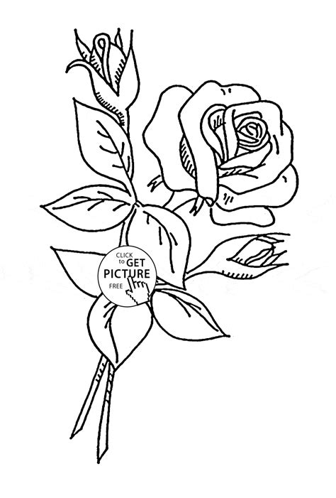 coloring page flower bud coloring pages of flower buds