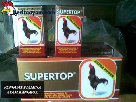 Obat Herbal Penambah Stamina Ayam Bangkok beberapa macam obat kuat untuk penguat stamina ayam bangkok