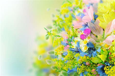 wallpaper flower view bright flower arrangement free high quality flower