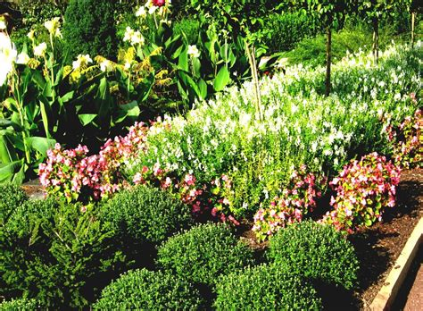 cheap flower garden ideas flower garden ideas sun cheap flower garden ideas for
