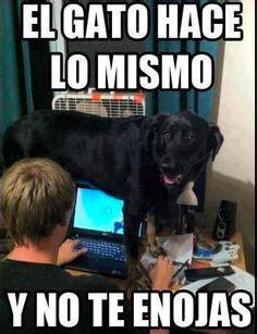 Memes Funny En Espaã Ol - 1000 images about spanish class memes on pinterest