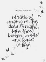 What if I fall? Oh but my darling, what if you fly! Quotes
