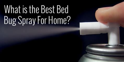 bed bug spray  home bed bug treatment site