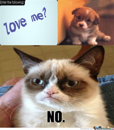 Grumpy Cat Meme Love - grumpy cat does nt love you by dojan meme center