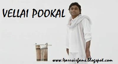 ar rahman vellai pookal mp3 download download ar rahman sir songs singles
