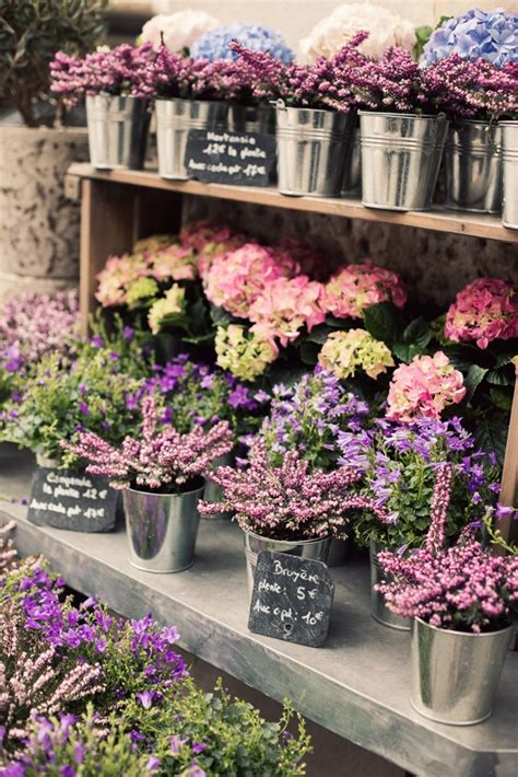Cottage Flavor Flowers Artfully Displayed Garden Flower Shop