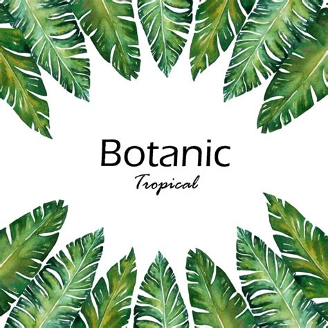 Tropical Forest Plant - leaves background design vector free download