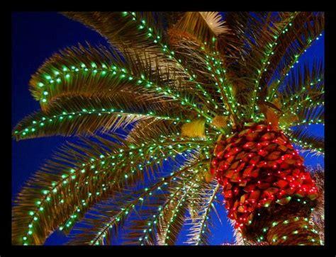 naples fl best christmas lights display victoria park