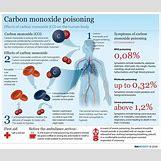 Carbon Monoxide Poisoning Body | 950 x 808 jpeg 138kB