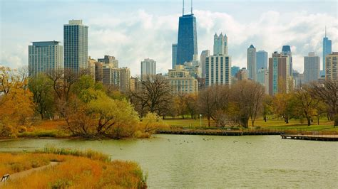 a and a lincoln park lincoln park zoo puntos de inter 233 s en chicago con expedia es