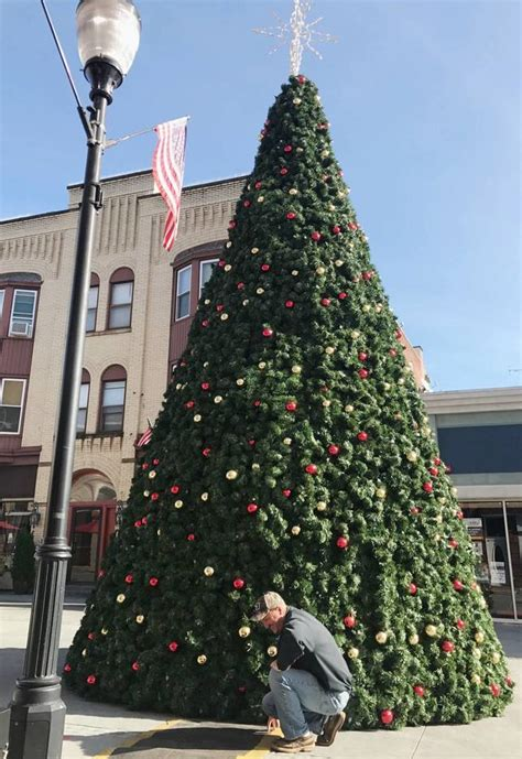 somerville christmas tree decorated wrapped in lights