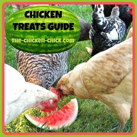 25 best ideas about chicken treats on