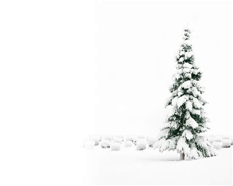 2015 white christmas background wallpapers images