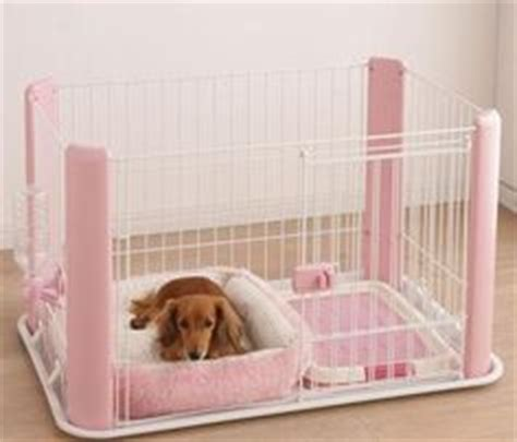 chihuahua beds 1000 images about chihuahua beds on pinterest dog beds
