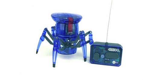 bug xl hexbug spider xl youtube