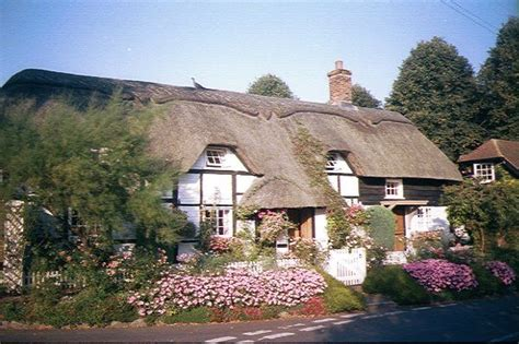 thatched cottage naas thatched cottage