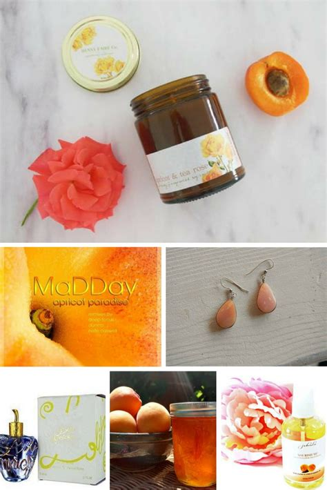 apricots celebrate national apricot day every day with 40 sweet fruity recipes books best gift idea apricot why to celebrate 9th jan