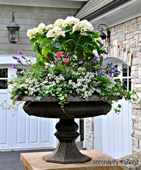 Garden Urns Planters by Best 25 Urn Planters Ideas On Urn Garden