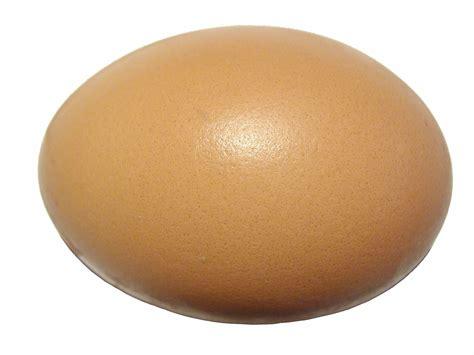 el huevo the egg simbolismo de el huevo biblioteca de nueva acr 243 polis