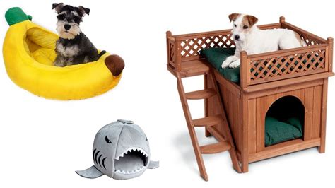funny dog beds funny pet beds today com