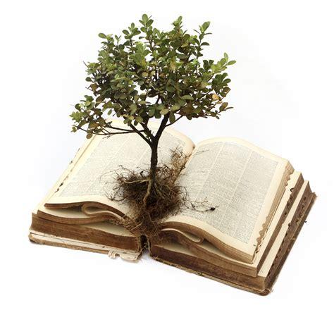 tree of life open bible church