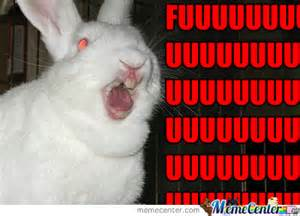 Angry Bunny Meme - angry quotes like success