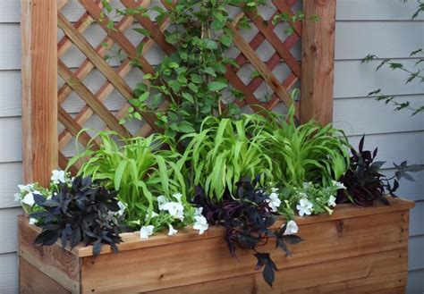Garden Answer On How To Build A Trellis With A Large Planter