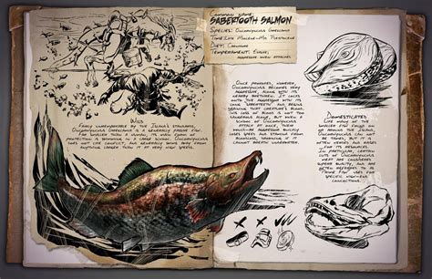 hammond s all new big book of drawing beginner s guide to realistic drawing techniques books ark survival evolved getting leeches sabretooth salmon