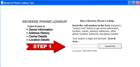 Phone Number Lookup Free Name Address Criminal Record Check Usa