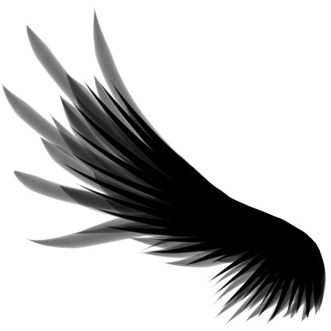 Wings Of A wing