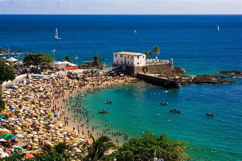 head   majestic beaches  salvador brazil