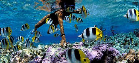 cheap french polynesia holidays save  french polynesia