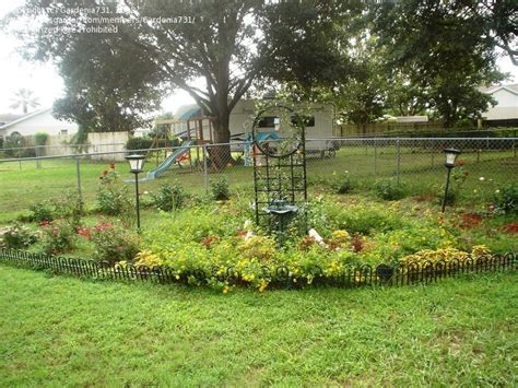 florida gardening landscaping ideas lakeland fl 1 by