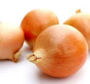 why are onions bad for dogs for liver or bad by gourmet lover fawesome tv
