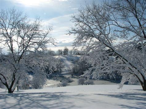 west virginia christmas tree farmscharleston wv 10 reasons in west virginia is the absolute best