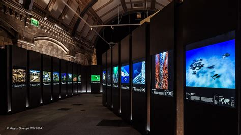 ark boat exhibit exhibition and tickets wildlife photographer of the year