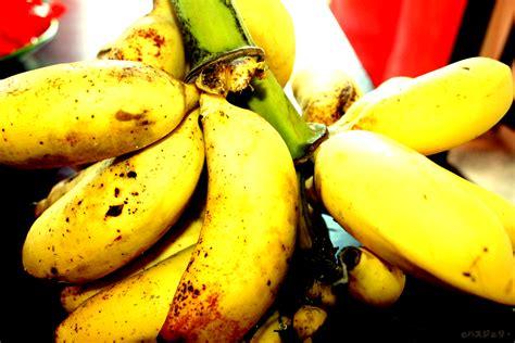 haszeli s photos buah buahan tempatan pisang malaysian fruits banana