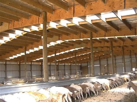 Goat Shed Design And Pictures by Goat Shelter Plans What Must You Look Out For When