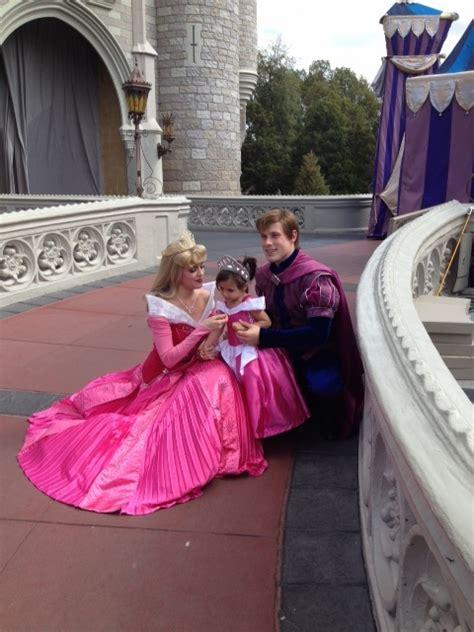 Arora Dress princess dress
