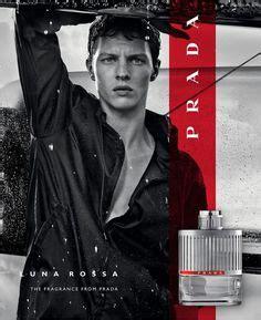 Parfum Original Mini Roberto Cavalli Signature Edp 25ml tiger oud eau de parfum by roberto cavalli is an floral fragrance for both and