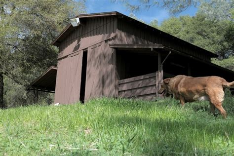 Yosemite Friendly Cabins by Yosemite Getaways Glinghub