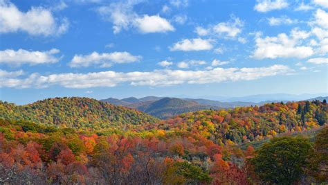 asheville fall colors asheville fall color forecast 2018 my