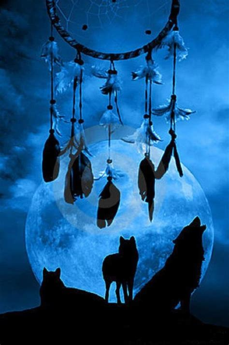 Dreamcatcher Single 1 wolf one of my power animals i like and are to catchers pinteres