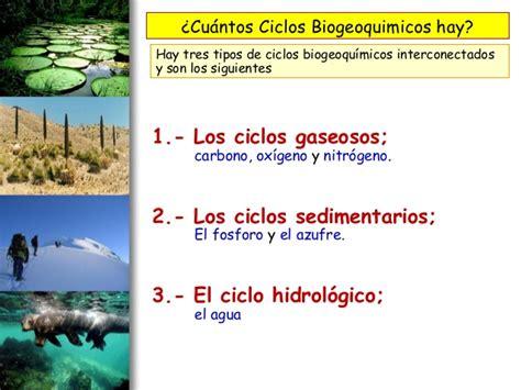 cadenas troficas y ciclos biogeoquimicos 2 interaccion entre seres vivos cadena trofica ciclo