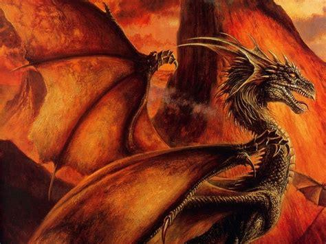 the dragon the dragon dragons wallpaper 13713339 fanpop
