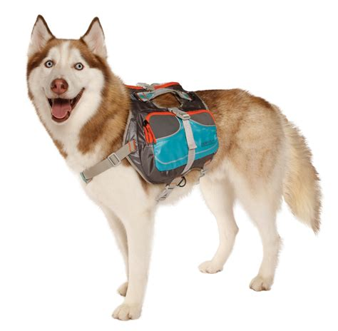 puppy backpack cesar millan backpack cesar s way