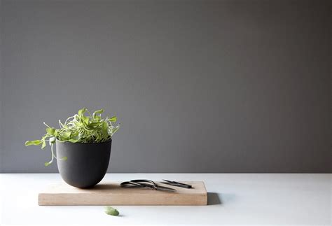 Windowsill Planters by 50 Unique Pots Planters You Can Buy Right Now