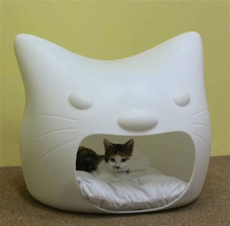 kitty bed kitty meow cat bed
