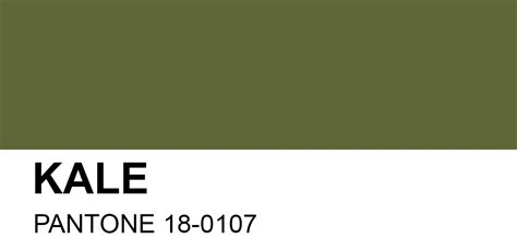 2017 Pantone Color Palette Pantone Fashion Color Report Spring 2017 Fashion Trendsetter