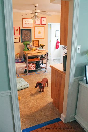 how to create a pet friendly kitchen pet friendly kitchen renovation via ammo the dachshund